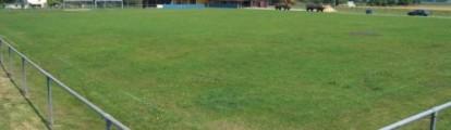 Stade du creugenat